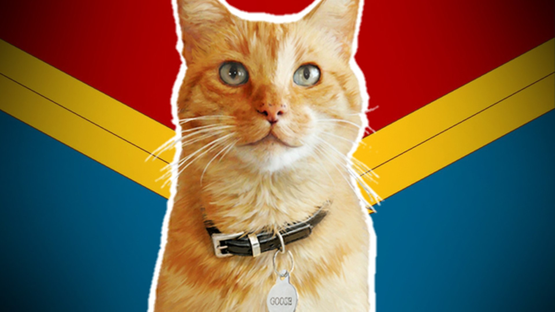"captain marvel"" directors pitch a spinoff movie for goose"